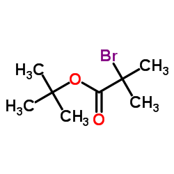 CHINA tert-butyl 2-bromo-2-methylpropanoate