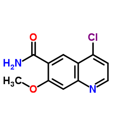 CHINA 4-chloro-7-methoxyquinoline-6-carboxamide