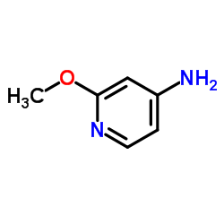 CHINA 4-Amino-2-methoxypyridine