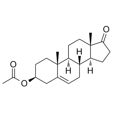 CHINA Dehydroisoandrosterone 3-acetate