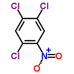 CHINA 2,4,5-Trichloronitrobenzene