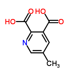 CHINA 5-Methylpyridine-2,3-dicarboxylic acid